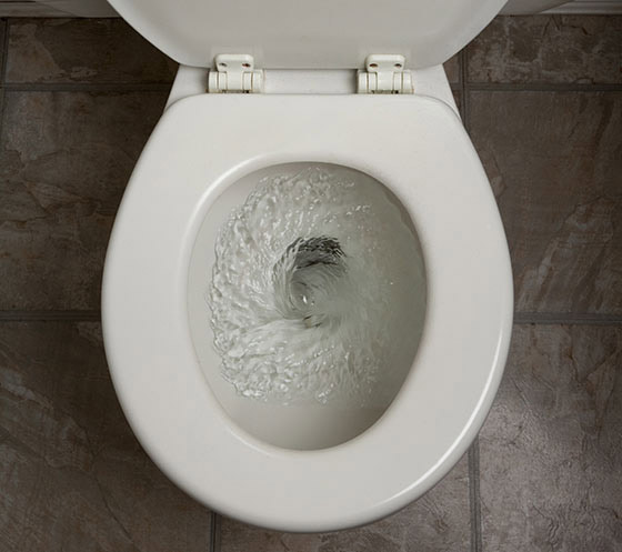 Things never to flush down your toilet
